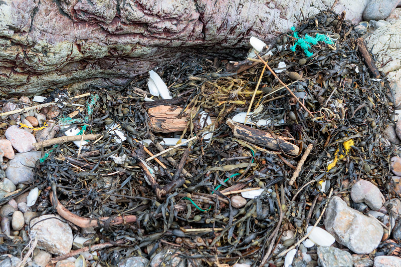 Fishing industry litter in the seaweed strand line at Petit Port on Guernsey's south coast on 18th January 2019