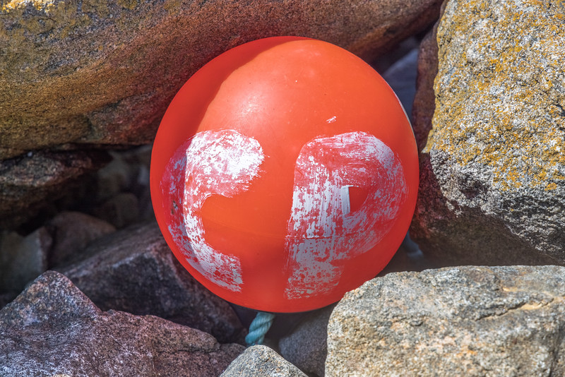 Polyform buoy with 'CPR' written on it from Pecqueries on Guernsey's north-west coast on the 22nd May 2021