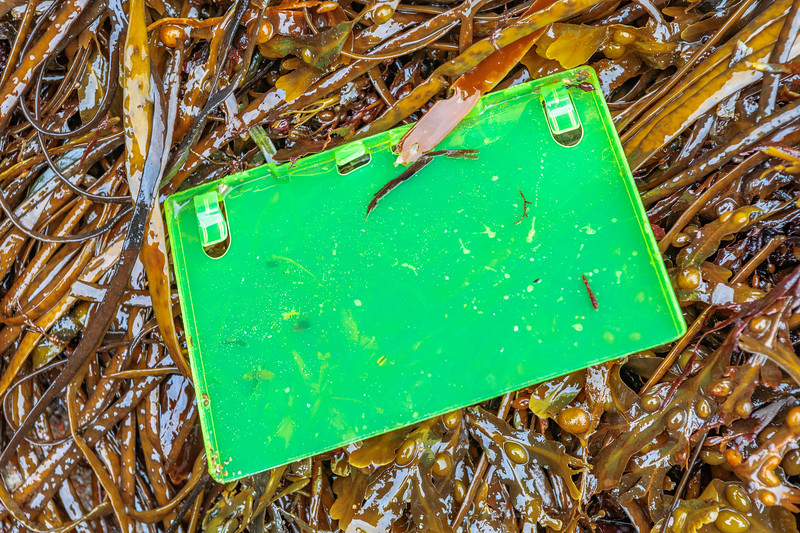 Part of a plastic Compact Disc case found at Petit Port on Guernsey's south coast on 10th October 2019.