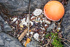 Polystyrene litter pieces and plastic float on the sea shore at Pleinmont on Guernsey's south-west coast on 28 April 2018