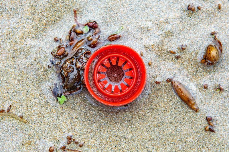 Red plastic piece on the beach at Petit Port on Guernsey's south coast on  8th October 2019