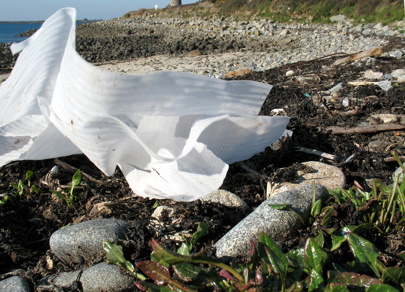 Foam film lying on the sea shore at Champ Rouget, Chouet, Guernsey on 17 February 2008