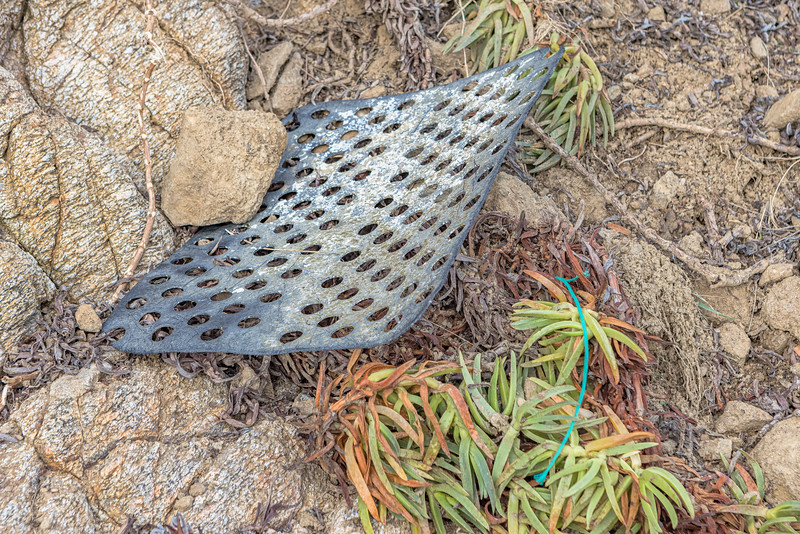 Floor plate of a shellfish pot at the top of the beach of Fermain Bay on Guernsey's east coast on 11th February 2021