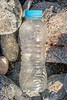 Oasis plastic water bottle washed up at Pleinmont on Guernsey's south west coast on 29th September 2019