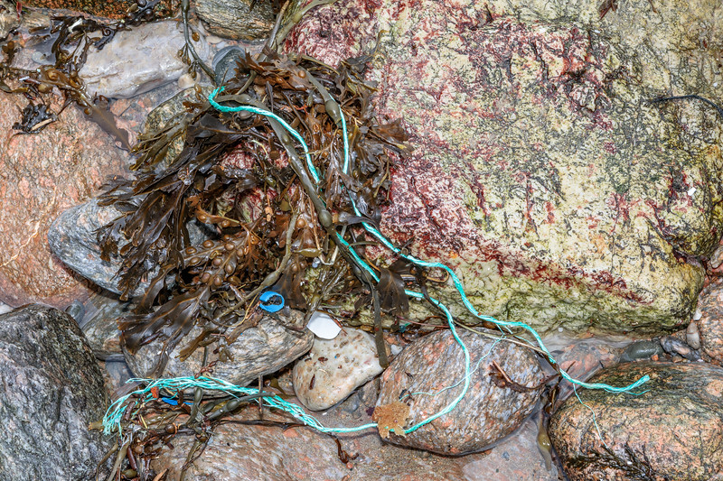 Fraying, twisted polypropylene twine at Petit Port on Guernsey's south coast on the 26th February 2020