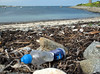 Plastic bottle in the strand line at Champ Rouget, Chouet, Guernsey