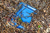 Blue plastic box lid washed up at Fermain Bay on Guernsey's east coast on 18th September 2020