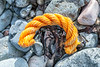 Short length of twisted rope washed up at Pleinmont on Guernsey's south west coast on 9th October 2020