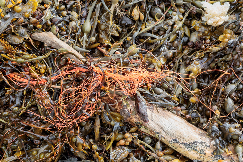Nylon line, perhaps dolly rope, washed up on the Petit Port sea shore on 4 March 2019