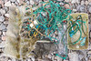 Plastic litter collected from Petit Port on Guernsey's south coast on the 1st October 2021
