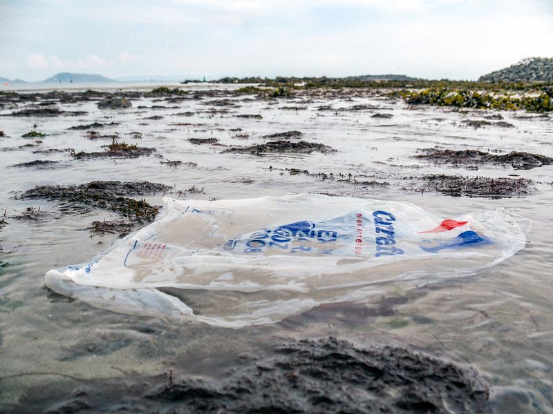 Carrefour plastic shopping bag on the Belle Greve Bay sea shore on Guernsey's east coast on 19th April 2008