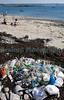 Litter collected from the beach at Champ Rouget on Guernsey's north-west coast on 26 June 2011