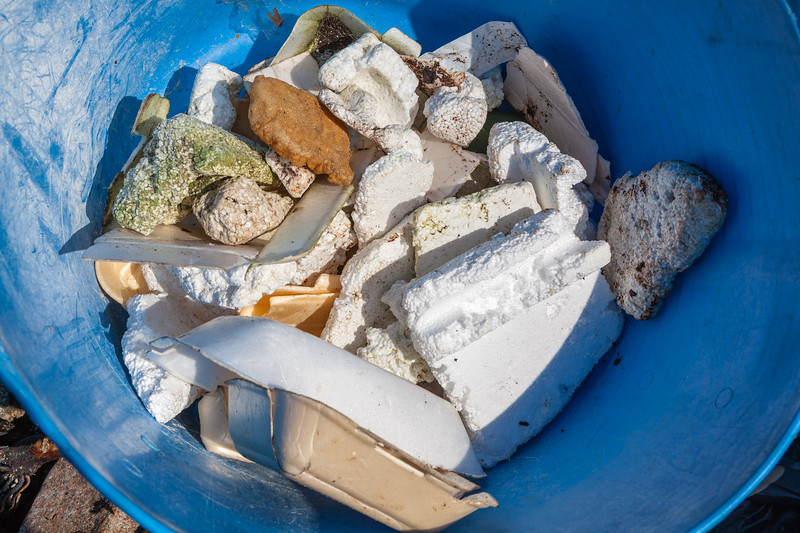 Polystyrene collected from the sea shore at Champ Rouget on Guernsey's north-west coast on 17 February 2013