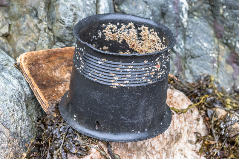 Black plastic funnel of a crab pot washed up at Petit Port on Guernsey's south coast on 18th December 2020