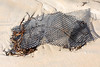 Broken hard plastic oyster mesh bag washed up at Petit Port on Guernsey's south coast on  28th November 2019