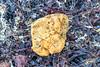 Piece of polyurethane foam on Rocquaine beach on Guernsey's south-west coast 31st August 2020