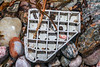 Hard plastic piece washed up at Petit Port on Guernsey's south coast on 10th March 2020