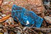 Piece of blue plastic with writing washed up at Petit Port on Guernsey's south coast on 15th February 2020