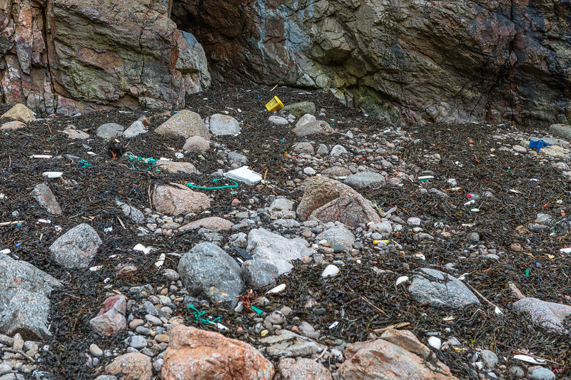 Seaweed strand line at Petit Port on Guernsey's south coast filled with washed up plastic litter on 6th February 2016