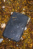Jokey plastic lid washed up in the seaweed strand line at Petit Port on Guernsey's south coast on 2nd February 2020