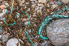 Twisted rope and braided twine in the seaweed strand line at Petit Port on Guernsey's south coast on 10th March 2020