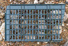 Piece of plastic crate found below the western boulder field at Petit Port on Guernsey's south coast on the 20th May 2021