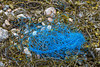 Blue dolly rope washed up at Petit Port on Guernsey's south coast on the 13th May 2021