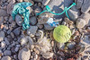 Balloon remnants, tennis ball, polypropylene twine & twisted rope on Guernsey's north coast on 22nd September 2021