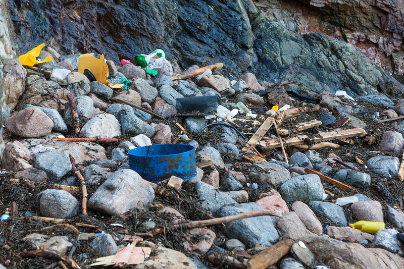 Plastic litter washed up in the strand line at Petit Port, Guernsey on 16 February 2014