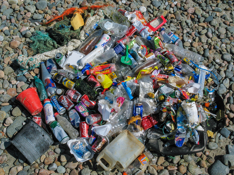 Beach litter collected in Saline Bay, Guernsey on 22 July 2008