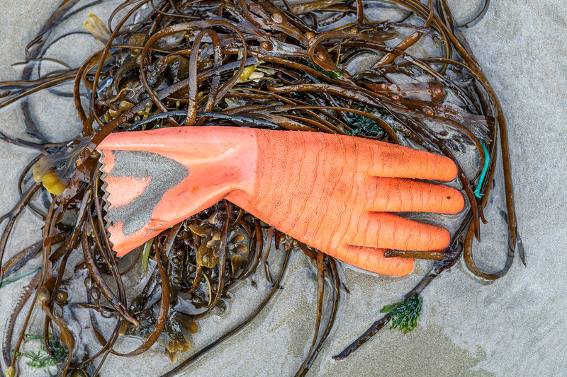 Rubber glove washed up at Petit Port on Guernsey's south coast on 8th October 2019