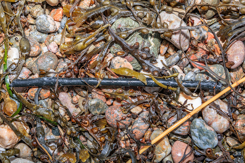 Plastic coating to lobster or crab pot frame washed up at Petit Port on Guernsey's south coast on 9th February 2020