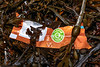 Food wrapper in seaweed strand line at Petit Port on Guernsey's south coast on 12th December 2019