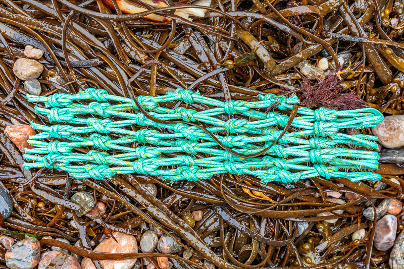 This piece of fishing net was collected from Petit Port on Guernsey's south coast on 12th October 2019