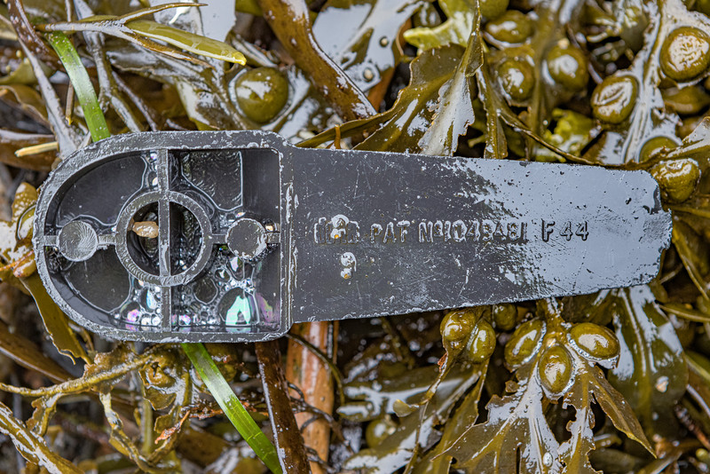 Black plastic piece in the seaweed strand line at Petit Port on Guernsey's south coast on 21st January 2021