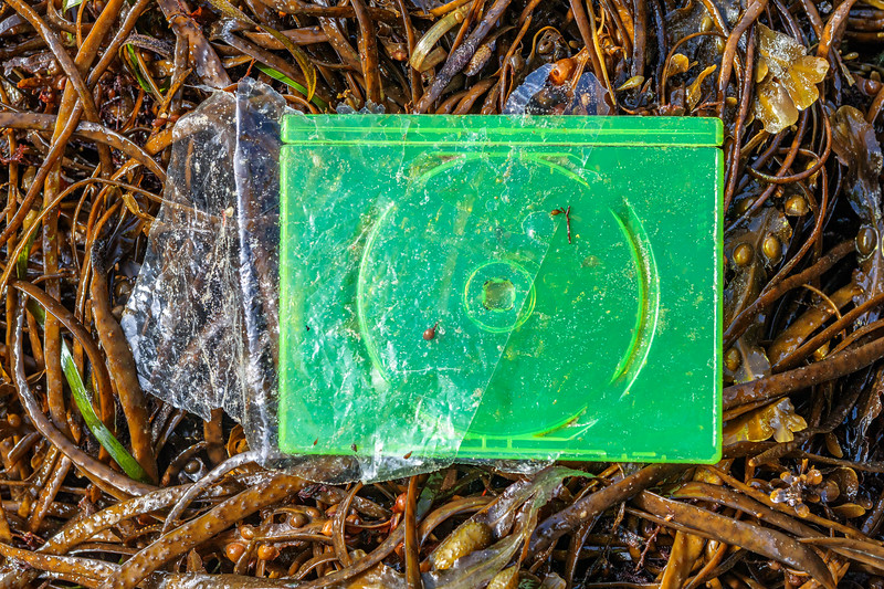 Lime Green plastic Compact Disc case found at Petit Port on Guernsey's south coast on 8th October 2019
