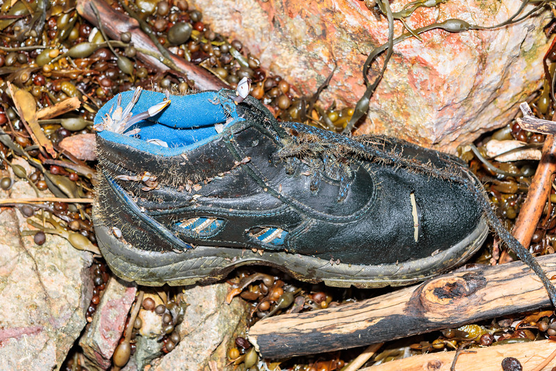 A left-footed Panter Silex Plus S3 oil resistant shoe washed up on the Petit Port sea shore on 10 February 2019