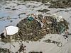 Rocquaine beach plastic styrofoam litter 120308 3680