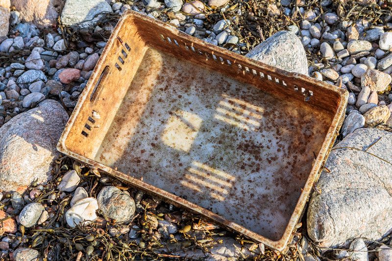 Algae and barnacle covered elpozo plastic crate washed up on 12 March 2019 at Petit Port on Guernsey's south coast