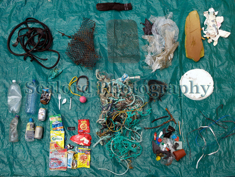 Selection of litter collected from the sea shore at Champ Rouget, Guernsey on 22 September 2011