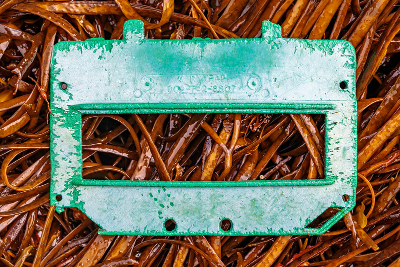 Lobster trap plastic escape panel from V R Traps, Yarmouth, Nova Scotia washed up at Petit Port on 27th September 2019