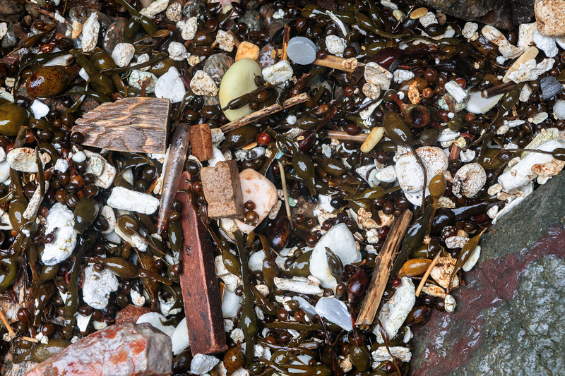 Plastic litter in the seaweed strand line at Petit Port on Guernsey's south coast on 11th March 2020