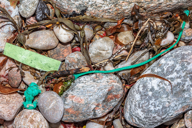Braided polypropylene twine in the seaweed strand line at Petit Port on Guernsey's south coast on 4th March 2020