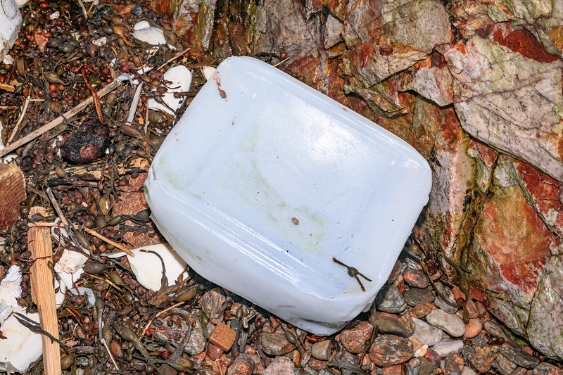 Plastic container in cave at Petit Port on 16th December 2019