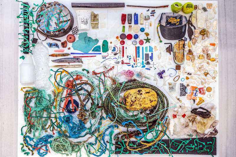 Marine litter collected from Petit Port on Guernsey south coast on 9 November 2018