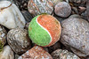 Tennis ball thrown for a dog washed up at Petit Port on Guernsey's south coast on 8th July 2020