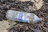 Highland Spring plastic water bottle littering the Belle Greve Bay sea shore on 13th January 2018