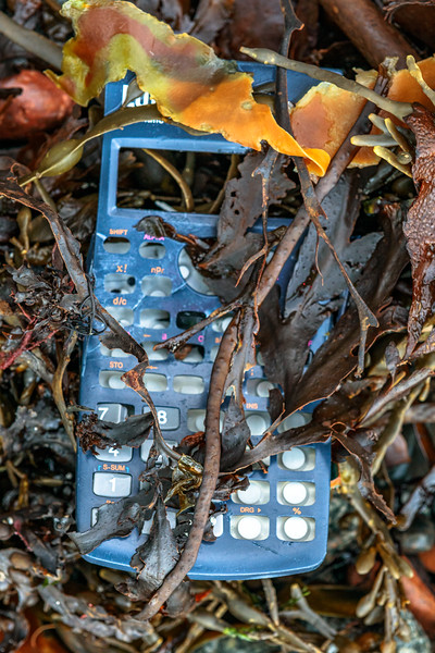 Plastic calculator case in the seaweed strand line of Havelet Bay on Guernsey's east coast on 1st December 2020