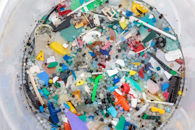 Nurdles and small plastic pieces collected from the Petit Port sea shore on Guernsey's south coast on 12th February 2020