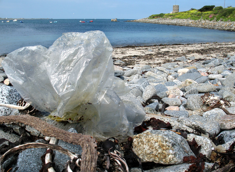 Plastic  sheet on the sea shore at Champ Rouget, Chouet on 5 June 2007